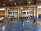 Volleyball Mixto